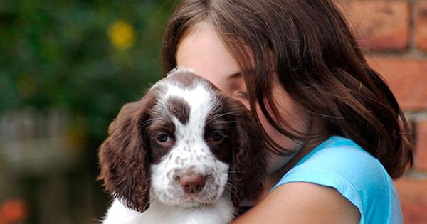 El cuidado de las mascotas y los beneficios para la salud